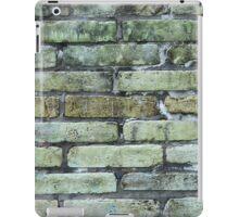 Green and Gray Brick Wall iPad Case/Skin