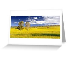 Canola Field In Spring  Greeting Card