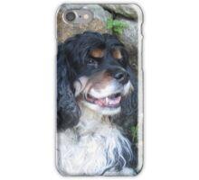 Tri Color Spaniel iPhone Case/Skin