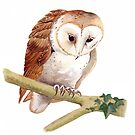 Barn Owl by Maureen Sparling
