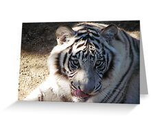 Licking his lips Greeting Card