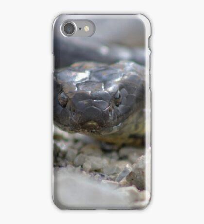 Reptile Rapture iPhone Case/Skin
