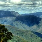 Where Mountain Ash and Kurrajong Grew Wide - High Country - The HDR Experience by Philip Johnson