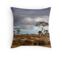 Rowsley landscape Throw Pillow
