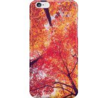Forest in Autumn iPhone Case/Skin