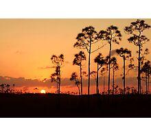 Everglades National Park Sunset Photographic Print