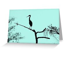 Morning Silhouette  Greeting Card