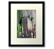 Decaying Telephone Post Framed Print