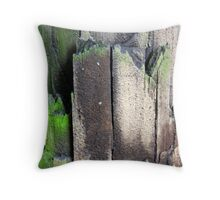 Decaying Telephone Post Throw Pillow