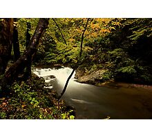 Laurel Creek Cascade Photographic Print