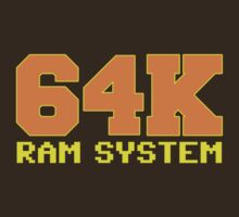 Commodore 64k RAM System by McPod