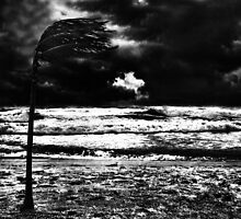 Into The Storm Fine Art Print by stockfineart