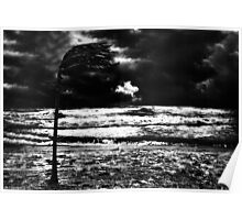 Into The Storm Fine Art Print Poster