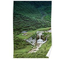 Man made waterfall in exotic tea plantation Poster