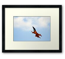 Airshow9 Framed Print
