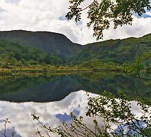 Gougane Barra Lough 2 by WatscapePhoto
