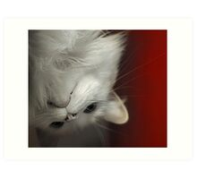 Upside Down Kitty Art Print