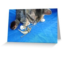 Young Male Tabby Cat Playing With It's Prey Greeting Card
