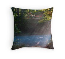 Rays ! Throw Pillow