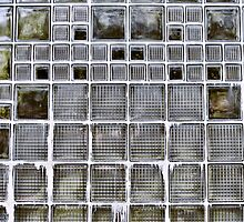Outdoor Glass Wall by joan warburton