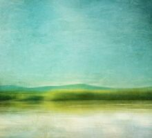 The green haze by Priska Wettstein