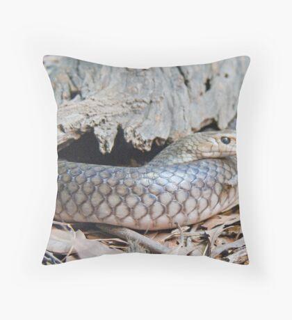 Australian Copperhead Snake, Queensland, Australia  Throw Pillow