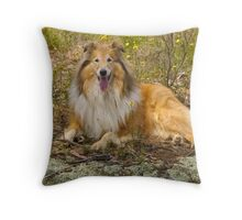 Bushed Throw Pillow