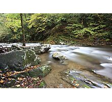 Laurel Creek  Photographic Print