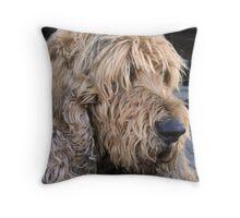 ..an otterhound.. Throw Pillow
