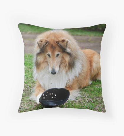 Collie Play Throw Pillow