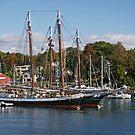 Camden Harbor Schooners by Brenda Dow