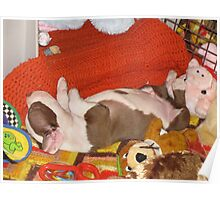 Bosco - Asleep With His Toys Poster