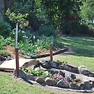 Open Garden Series- Quiet setting !!! by Heabar
