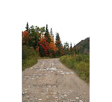 Old Goulais Bay Road Photographic Print
