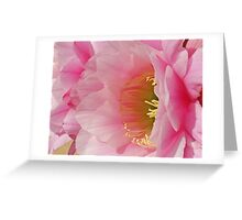 Cactus Flower Greeting Card