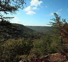 Cumberland Plateau Mountains by kathy s gillentine