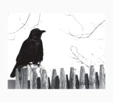 Crow on a Fence  Kids Tee