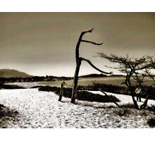 Carmel Photographic Print