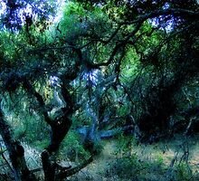 Composition With Gnarled Trees and Tangled Branches in Blue, Black, and Green With Accents of Other Colors #1 by Ivana Redwine