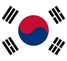 Flag of South Korea  by abbeyz71