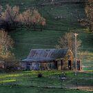 Sun setting on Byng farm by pedroski
