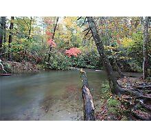 Abrams Creek  Photographic Print