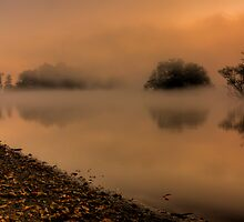 Autumn Shoreline by Martin Griffett
