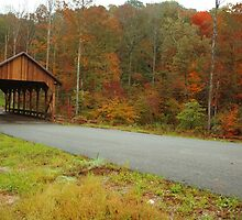 Catoosa Ridge covered bridge by kathy s gillentine