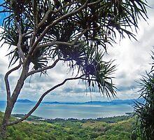 Kaneohe Bay by Bradley Old