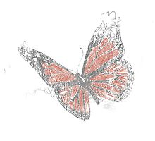 Butterfly (Biro) by Rebel Rebel