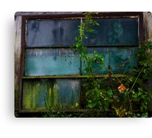 Old Stain Glass  Canvas Print