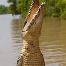 Jumping Crocodile by Erik Schlogl