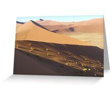Dune 45, Namib Sand Sea, Namibia Greeting Card