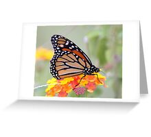 AS LONG AS THERE IS LANTANA...... Greeting Card